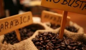 Việt Nam: Người khổng lồ ngành cà phê