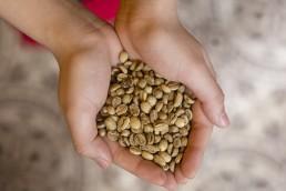 cà phê được giá milano
